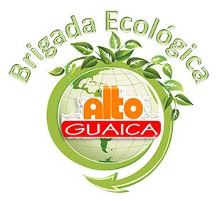 Brigada Ecológica Alto Guaica, Venezuela
