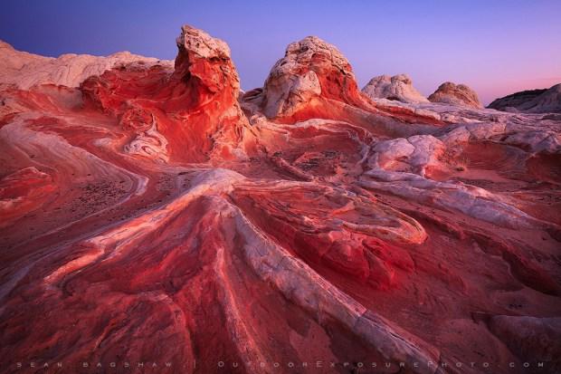 Desierto de sonora en Arizona, USA